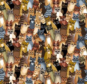 Коты-весна